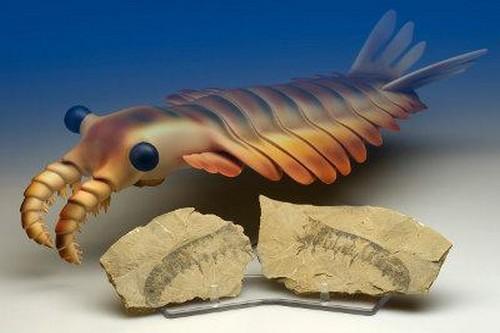 Weird Prehistoric Creatures