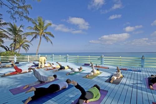 Sivananda Ashram Yoga Retreats