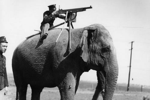 Top 10 Historic Photos