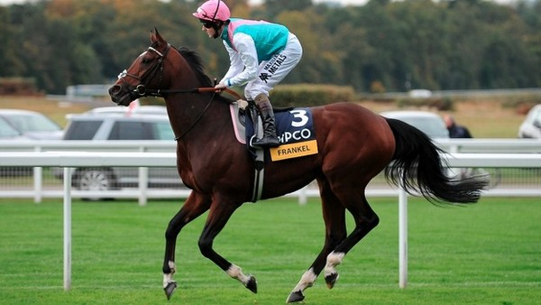 Frankel Best Race Horses