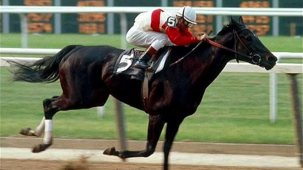 Ruffian Best Race Horses