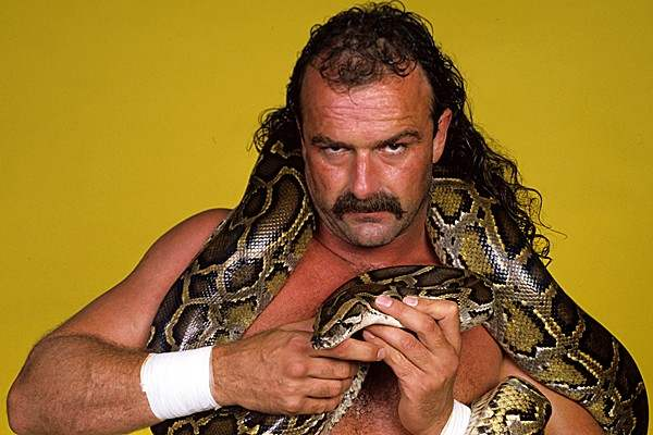 jake the snake oberts