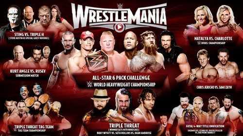 WWE WrestleMania 31 Economic Impact