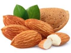 Organic Bitter Almonds