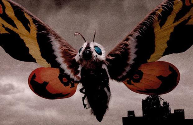 Mothra Interesting Kaiju Monsters