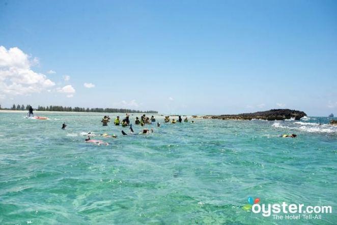 best scuba diving beaches