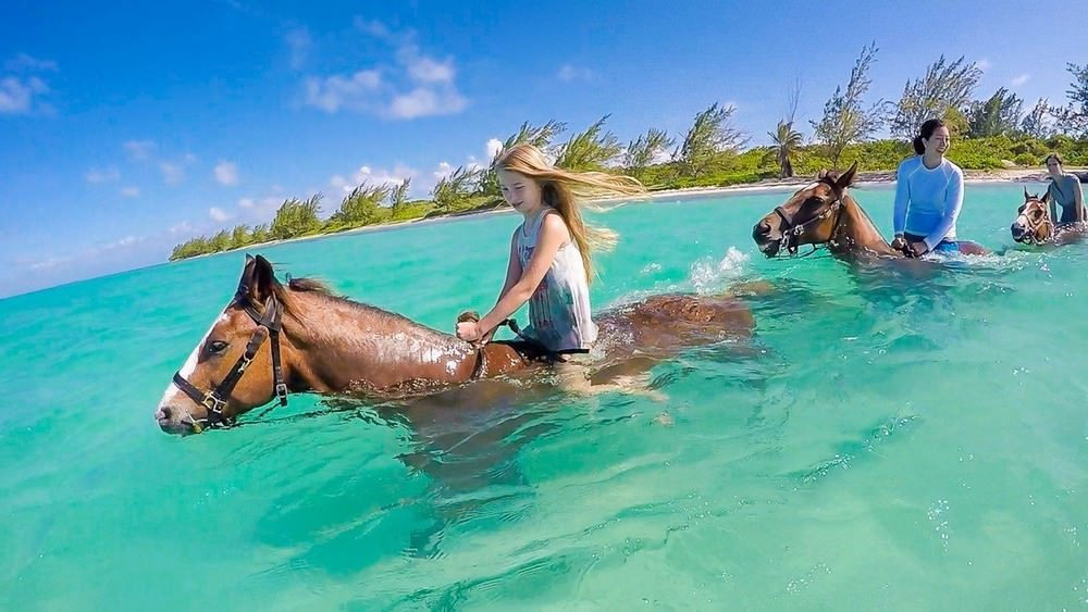Things to Do in Grand Cayman