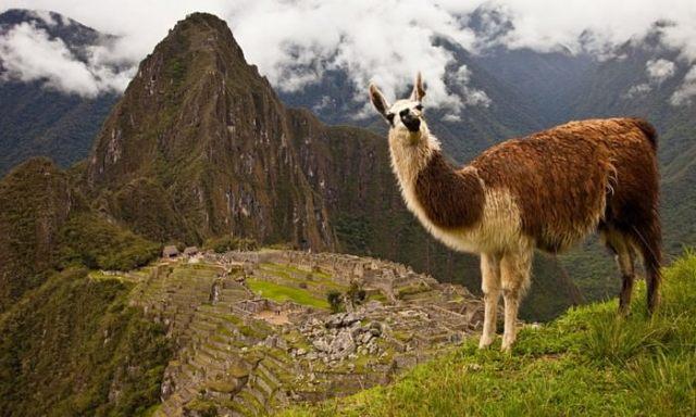 Hike Among History in Peru