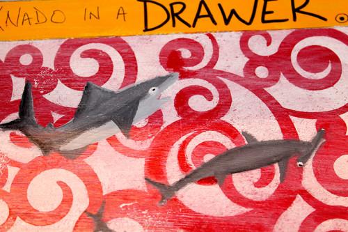 Shark Details