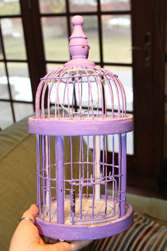 0001 Purple Birdcage - Better
