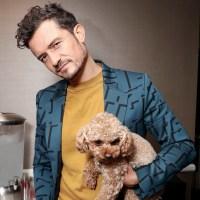 Orlando Bloom, dog Mighty