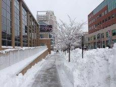 blizzard-3-002