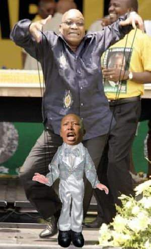 Zumas puppet Malema photo