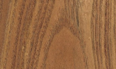 Wood Grain Identification Guide | Wooden Thing