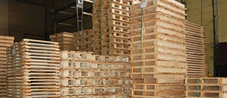 Hire a Pallet Repair and Management Service Provider Now and Break the Wastage Cycle of your Company