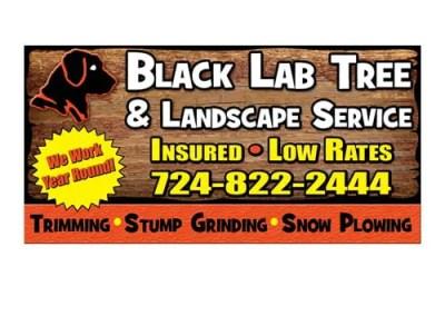 Black Lab Tree & Landscaping Billboard Design