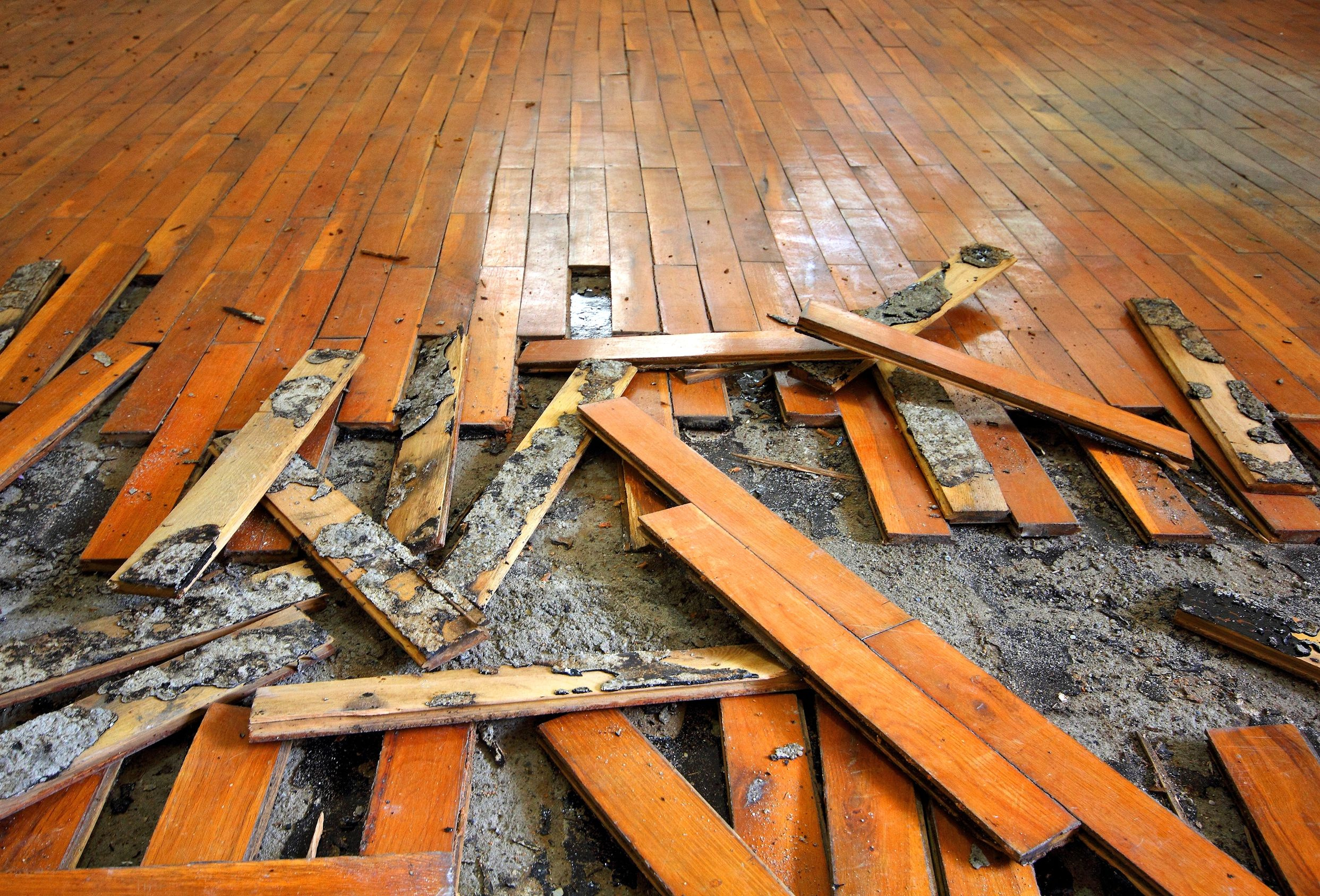 How To Repair A Water Damaged Wood Floor Woodfloordoctor Com
