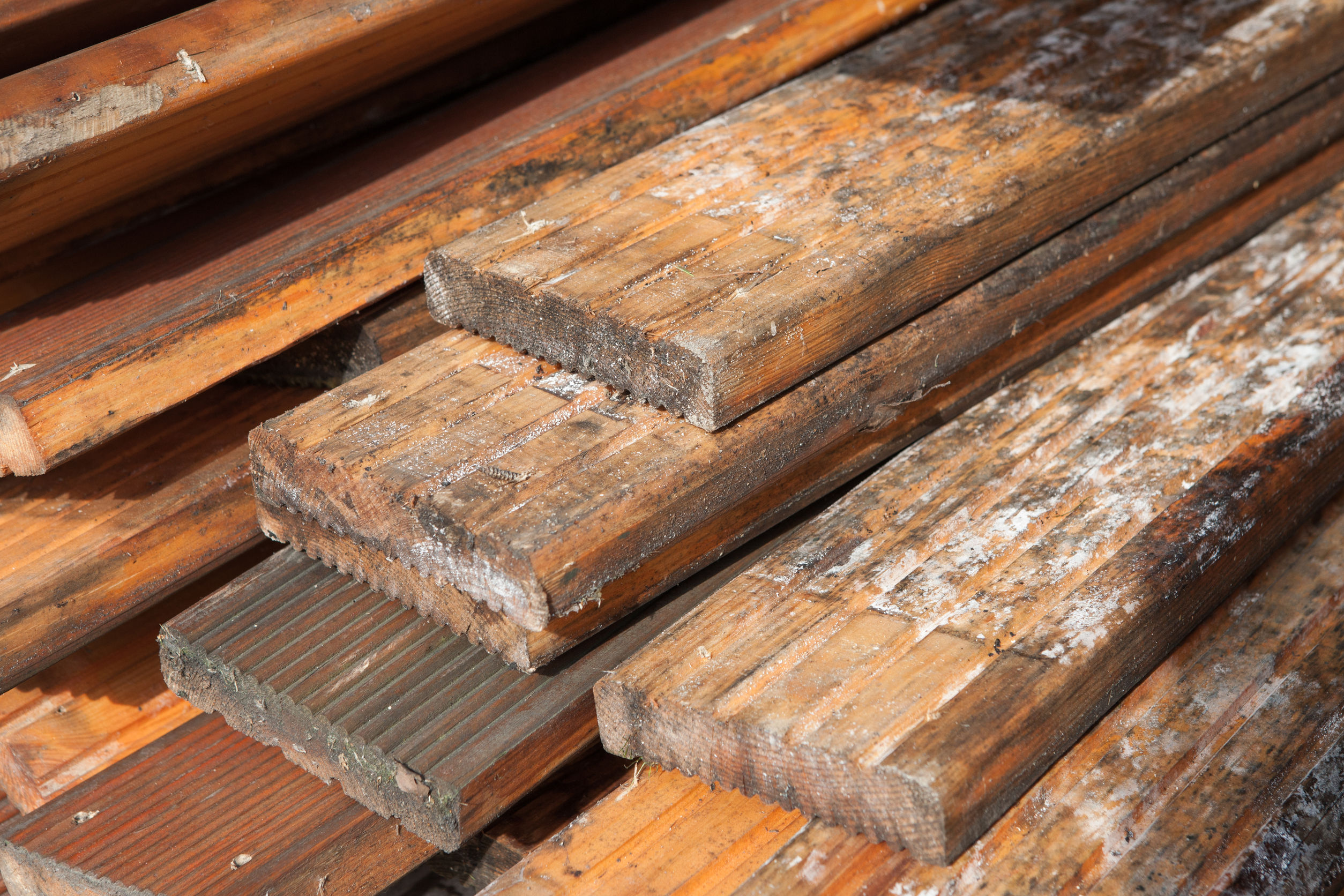 Mold Hardwood Floors Safety and Preparing The Removal