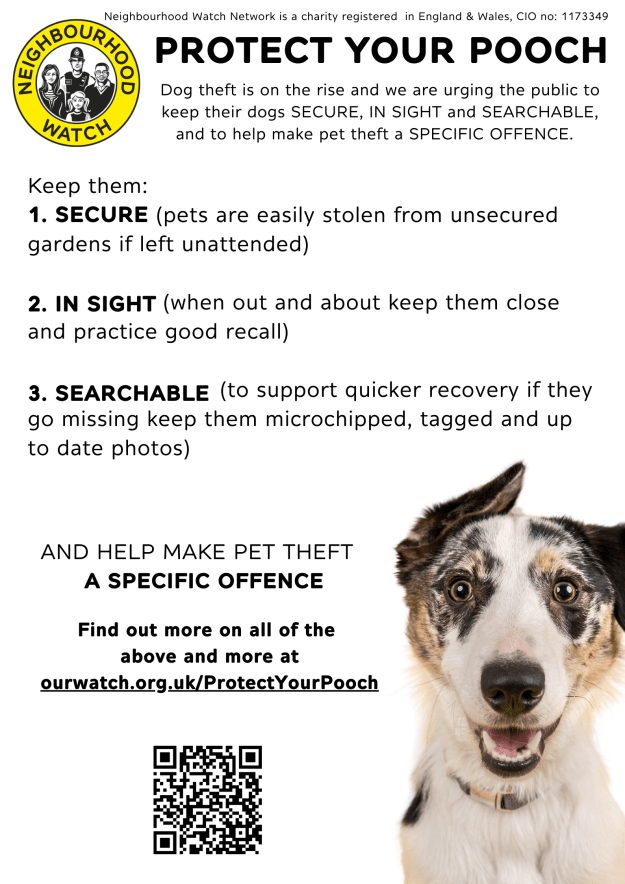 protect your pooch campaign poster