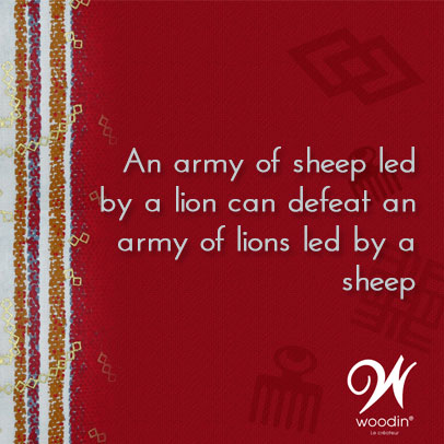 An-army-of-sheep