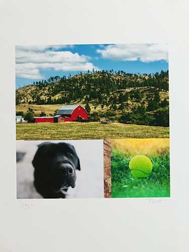 A red barn at the base of wooded foothills, blue sky and puffy white clouds; a black labrador retriever and a yellow tennis ball in the grasss.