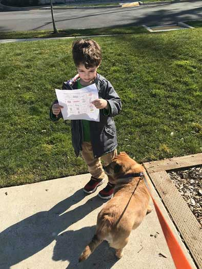 A preschool boy examines pictures on a piece of paper, while his dog waits.
