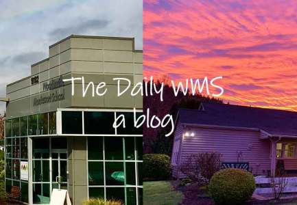 Daily WMS