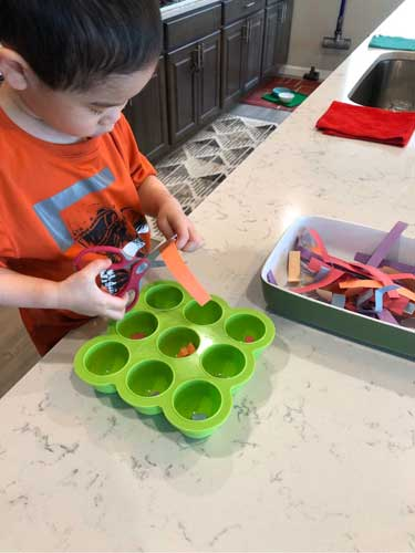 A toddler cuts strips of orange construction paper into a lime-green muffin tin