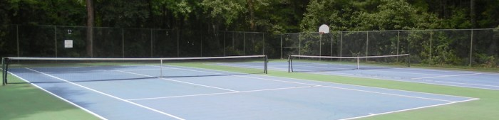 Tennis Courts featured image