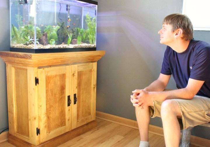Danny watching fish in aquarium tank sitting on aquarium cabinet stand
