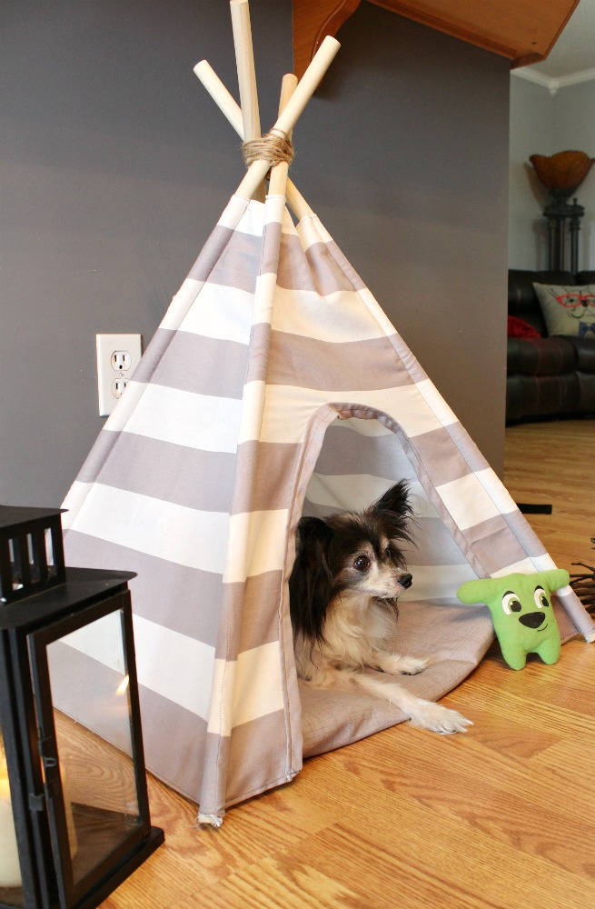 Super easy tutorial for how to sew a DIY dog tent with striped or patterned fabric & DIY Dog Tent