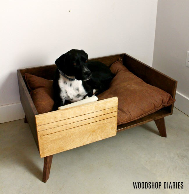 Lucy laying down in DIY modern dog bed