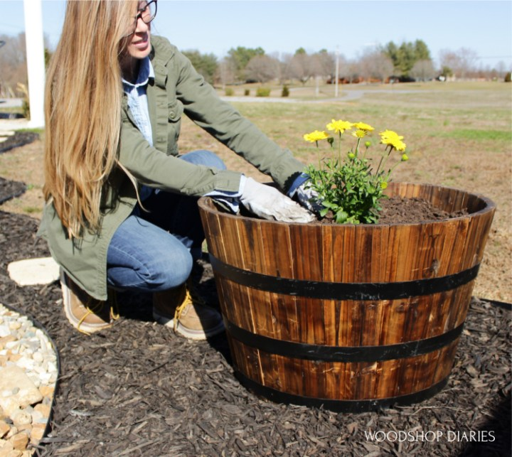 Shara planting flowers in barrel planters at corner of new updated garden patio