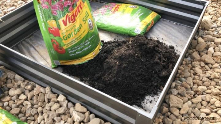 Pouring bags of garden soil into raised garden beds of garden patio makeover
