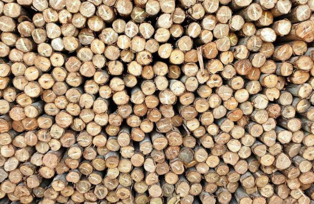 Eucalyptus Firewood