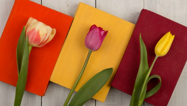 Flowers tulips and colored books on a white wooden table_53883