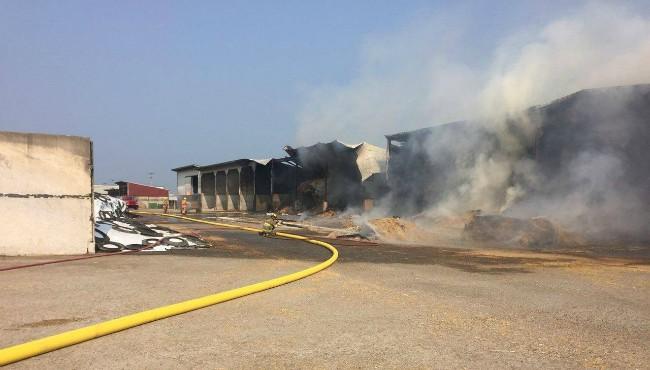 Dairy Farm fire 4_1534324747308.jpg.jpg