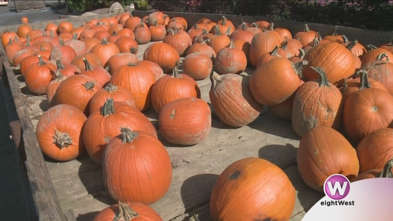 Fall_fun_at_Klackle_Orchards_0_20181023170350