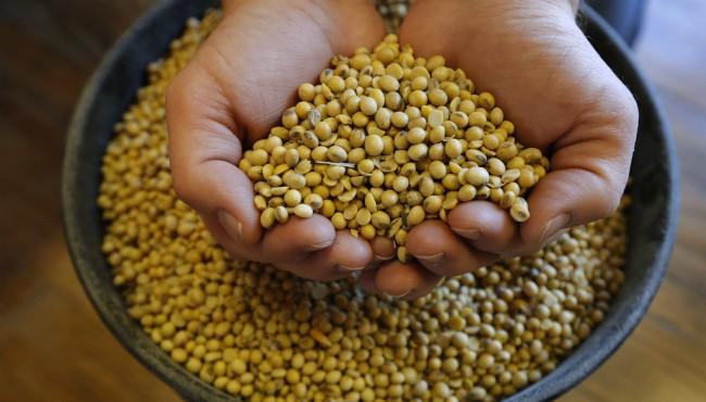 soybeans generic AP 112718_1543338634018.jpg.jpg