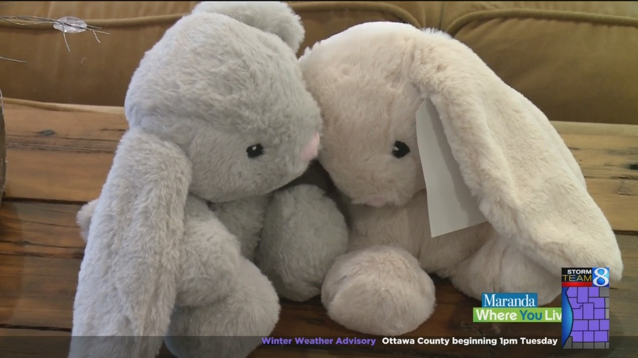 How_one_stuffed_animal_is_helping_soothe_9_20190122180000