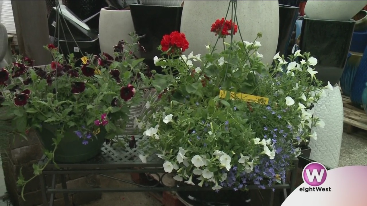 It___s_the_perfect_weekend_for_planting_0_20190523170047