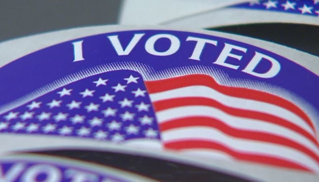 generic i voted generic vote generic voting generic election