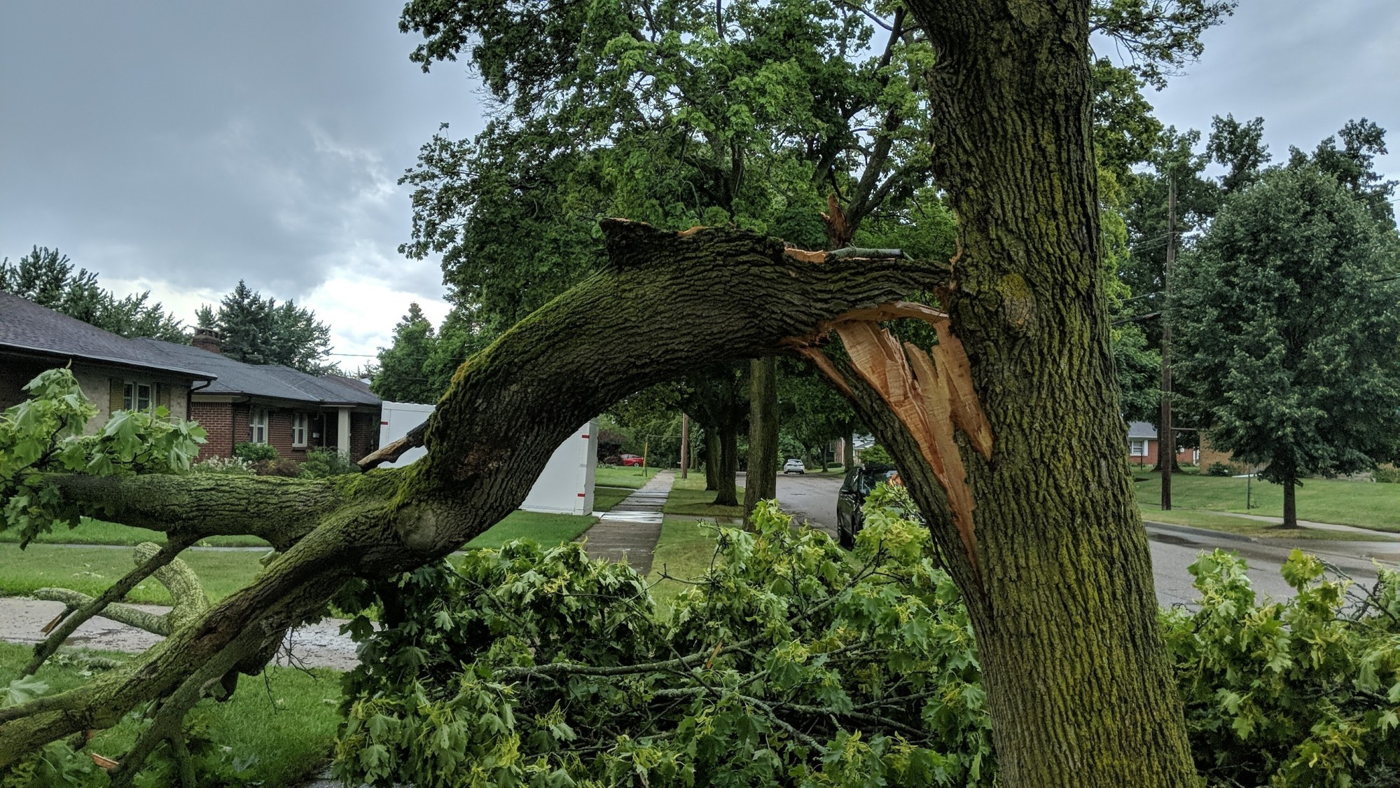A photo of storm damage in Grand Rapids on July 20, 2019.
