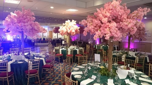 blossom tree hire north west