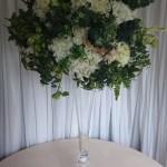 Extra-large-white-hydrangea-and-foliage-1