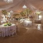 Blossom tree wedding decorations