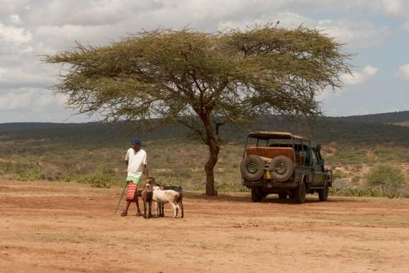 Maasai market day