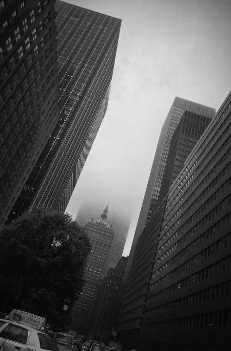Foggy Park Avenue