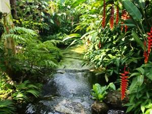 Penang National Park stunning nature