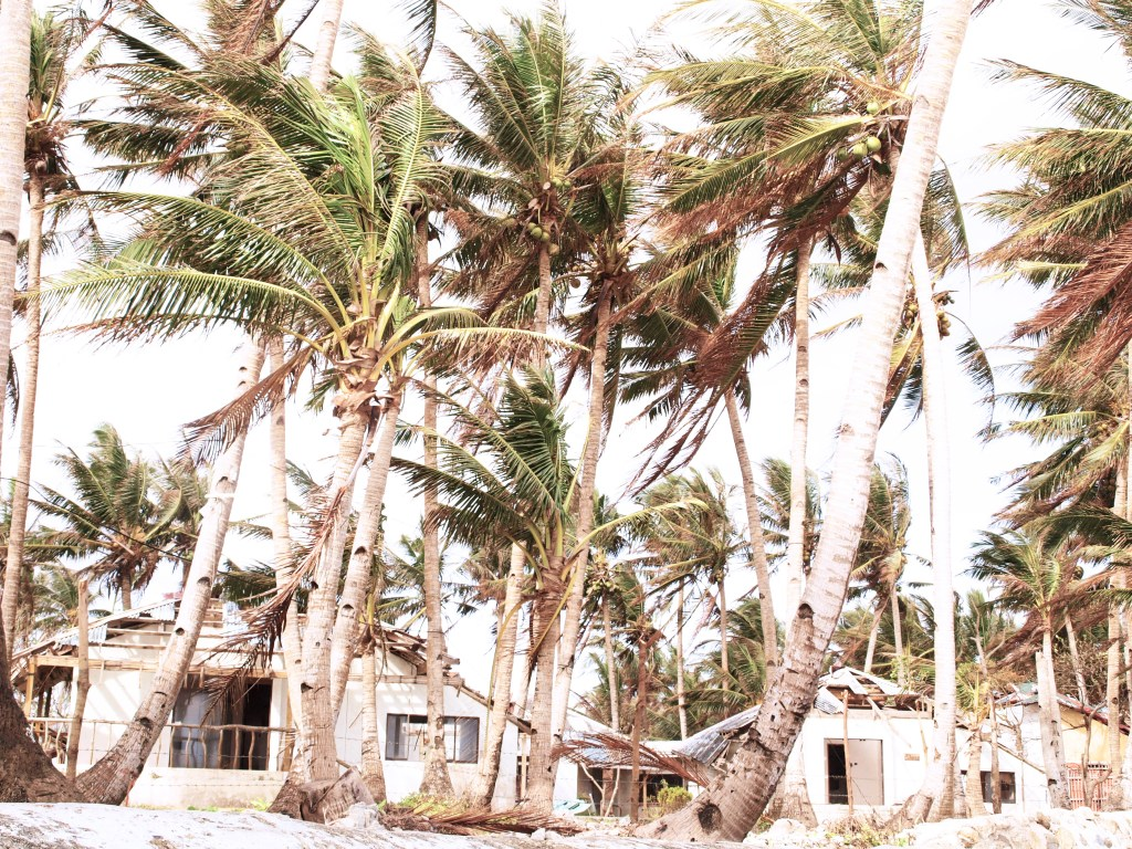 Philippines, Boracay, Typhoon Hayan damage
